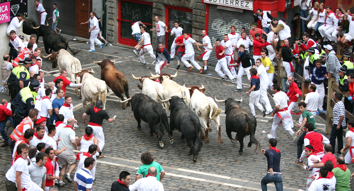 The Running of the Bulls Experience